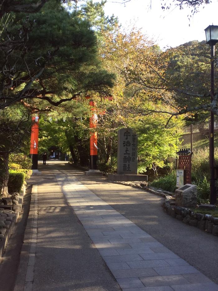 宇治上神社 紅葉前 朝の光